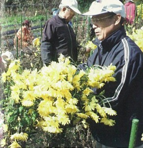 man-with-chrysanthemum
