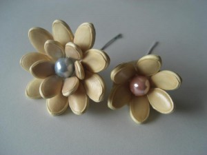 The seeds of the two-layered flower are placed on a flatter cone than a one-layered one.