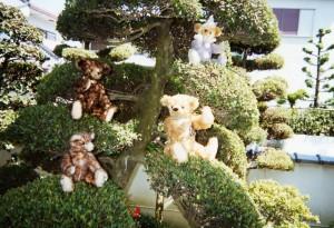Four_Bears_2